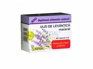ULEI DE LEVANTICA – (capsule moi)